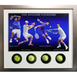 Andy Murray, Federer, Nadal, Djokovic signed genuine authentic tennis ball display