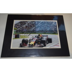 Max Verstappen F1 Red Bull signed genuine signature authentic photo display