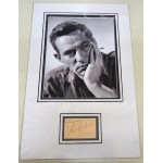 Peter Finch signed genuine signature autograph display UACC
