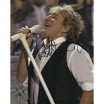 Rod Stewart Faces etc authentic genuine signed image COA UACC AFTAL