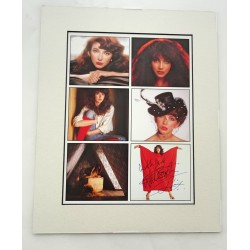 Kate Bush music signed genuine signature autograph display