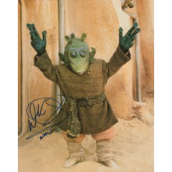 Warwick Davis Star Wars Wald genuine authentic autograph signed photo