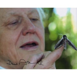 David Attenborough genuine signed authentic signature photo COA