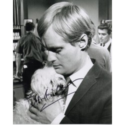 David McCallum authentic genuine signed autograph photo COA UACC