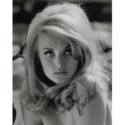 Barbara Bouchet genuine authentic autograph signed photo COA UACC