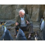 David Attenborough genuine signed authentic signature photo