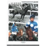 Peter Scudamore  authentic hand signed horse racing photoM477