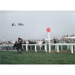 Brian Fletcher Horse Racing hand signed authentic photo 3M570