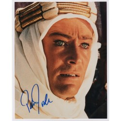 Peter O'toole Lawrence of Arabia signed genuine signature photo