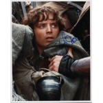 Elija Wood LOTR Lord Rings genuine authentic autograph signed photo