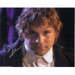 Sean Astin LOTR Lord Rings genuine authentic autograph signed photo