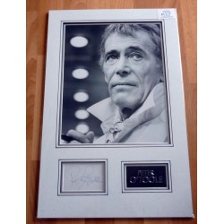 Peter O'toole  genuine authentic signed autograph display with photo.