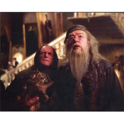 David Bradley Harry Potter genuine signed authentic signature photo
