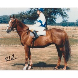 Horse Racing Bob Champion signed photo.