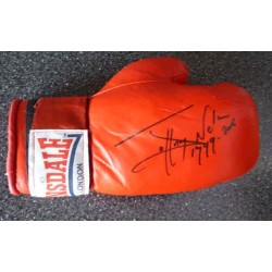 Johnny Nelson boxing genuine authentic signed autograph glove
