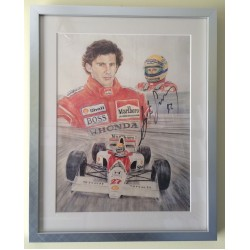 Ayrton Senna  genuine authentic signed autograph signatures