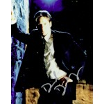 David Duchovny  authentic genuine autograph signed photo