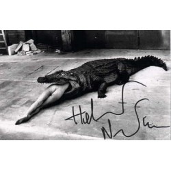 Helmut Newton authentic signed genuine signature